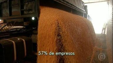 Produtores investes em silos particulares para guardar safra - Em Mato Grosso do Sul, a capacidade de armazenamento dos grãos cresceu 40% em dez anos. Uma boa parte está em propriedades particulares e cooperativas. Além de reduzir os custos para guardar os grãos, o agricultor escolhe a hora de vender.