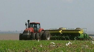 Produtores de Goiás começam o plantio da soja - Plantio ocorre onde o índice pluviométrico é favorável ao plantio.