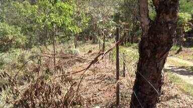 Clima quente e seco favorece surgimento de queimadas - Região do Ibituruna ganha tratamento especial nesta época do ano.