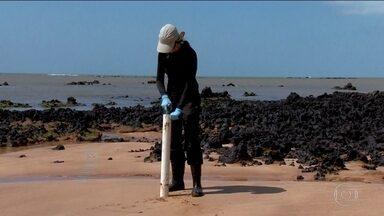 Pesquisadores fazem levantamento das consequências da lama de Mariana no ES - Cientistas querem saber aonde a contaminação chegou e como ela afeta os animais e as pessoas.