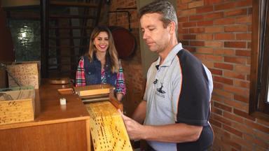 Conheça as tradições holandesas de Carambeí com o 'Estúdio C' - No 'Estúdio C' deste sábado (13), mostramos tudo sobre a cultura holandesa na cidade de Carambeí, na região dos Campos Gerais. Vem conhecer esse pedacinho da Holanda no nosso Paraná!