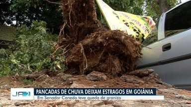 Chuva forte causa estragos em Goiânia - Moradores relatam queda de energia e de árvores pela capital e Região Metropolitana.