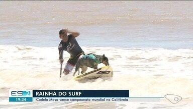 Cadela do ES participa de competição de surf na Califórnia - Maya é de Marataízes e foi campeã!