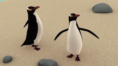 O Pinguim-De-Olho-Amarelo