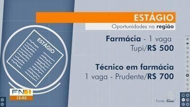 Confira as oportunidades de estágio na região de Presidente Prudente - Estudantes podem procurar o Centro de Integração Empresa-Escola (Ciee).
