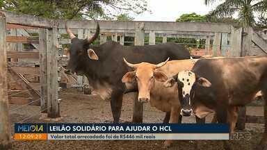 Leilão solidário arrecada R$446 mil reais para o Hospital do Coração - Ao todo, 395 animais foram leiloados.