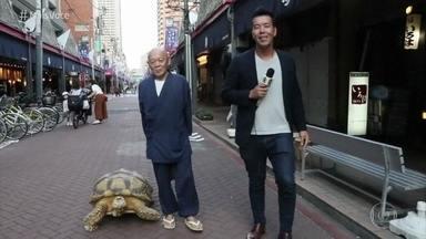 Tartaruga de estimação chama atenção nas ruas de Tóquio - Jhony Sasaki conversa com o dono da tartaruga, que comprou o animal há mais de 30 anos