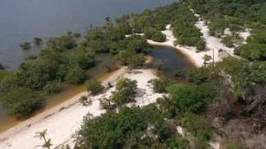 No interior da Amazônia, Belterra guarda e preserva belezas naturais - O primeiro paraíso é a Praia Pindobal. Cerca de 72 famílias sobrevivem do turismo com bares, restaurantes e pousadas instaladas ao longo da via de acesso à praia que recebe centenas de turistas.