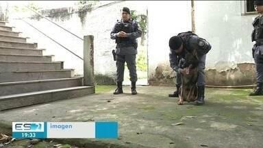 Cão farejador vai ajudar PM a achar drogas e armas, em Cachoeiro - Ele é um reforço nas ações da polícia.
