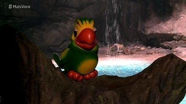 Louro José visita fonte mística de Serro Azul - Ele fica na expectativa de encontrar Marilda, mas Ana Maria manda o papagaio voltar para o estúdio