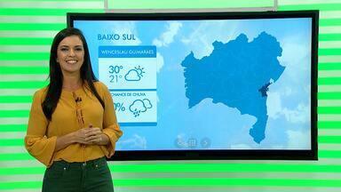 Previsão do tempo: chuvas regulares contribuíram para produção de banana na Bahia - A expectativa é de fartura na produção de banana durante o mês de dezembro.