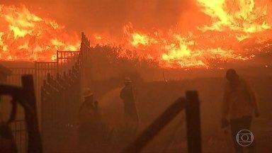 'Quando vi as chamas, não acreditei', conta sobrevivente de incêndio na Califórnia - Fantástico conversou com pessoas que abandonaram suas casas para se salvar do fogo. Mais de 1.200 pessoas continuam desaparecidas na Califórnia, nos Estados Unidos.