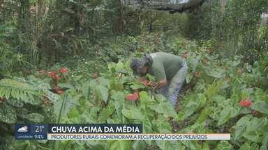 Chuva acima da média é comemorada pelos produtores rurais - De acordo com o Inmet, a média histórica para novembro é de 226 milímetros. Até agora (20) já choveu mais de 300. Agricultores de Brazlândia comemoram a chuva frequente para a recuperação do plantio, castigado pela longa seca e racionamento de água nos últimos dois anos.