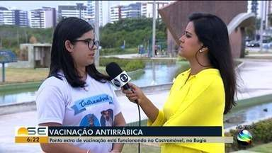 Ponto extra de vacinação em Aracaju está funcionando no Castramóvel - A meta é vacinar 47 mil cães e gatos em toda a capital.