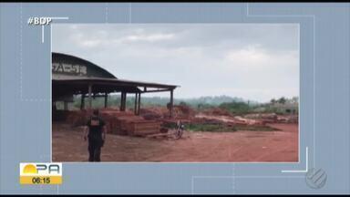PF desarticula madereiras que extraíam madeira de dentro de reservas indígenas no Pará - Esquema faturava R$ 6 milhões por mês