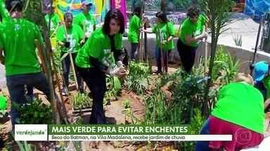 Beco do Batman, na Vila Madalena, recebe jardim de chuva para evitar enchentes - O Beco do Batman, na Vila Madalena, está recebendo um jardim de chuva. As áreas verdes ajudam a evitar enchentes.
