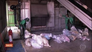 TJ-SP cria regra para diminuir o tempo até a destruição de drogas apreendidas - Para diminuir os estoques gigantescos nas delegacias paulistas, a nova regra diminui a burocracia no caminho até a destruição das drogas.