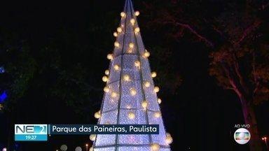 Decoração de Natal é inaugurada em Paulista - Árvore gigante foi feita com material reciclado.