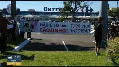 Ativistas protestam contra morte de cão em hipermercado de Campinas - Animal foi morto em uma loja de Osasco.