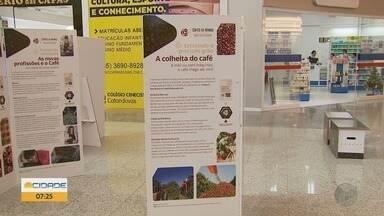 Exposição sobre café fica até 23 de dezembro em Varginha, MG - Exposição sobre café fica até 23 de dezembro em Varginha, MG