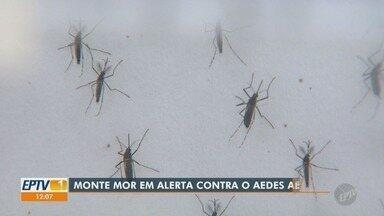 Monte Mor lidera ranking de infestação de Aedes aegypt na região - De acordo com o Ministério da Saúde, dez cidades da região de Campinas (SP) estão em situação de alerta.