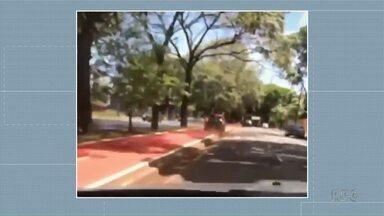 Motorista flagrado andando em ciclovia pode responder por crime de trânsito - Do início do ano até agora 41 pessoas já morreram no trânsito em Maringá
