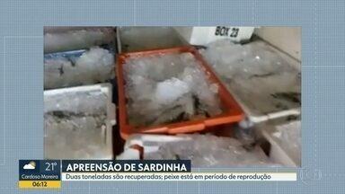 Duas toneladas de sardinhas são apreendidas, em Niterói - Os peixes estavam num caminhão, em Ponta D'Areia. A sardinha está no período de reprodução e não pode ser pescada. A carga foi doada para um orfanato.