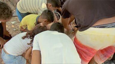 Meninos de projeto social de Cuiabá ganham presente antecipado no fim de ano - Meninos de projeto social de Cuiabá ganham presente antecipado no fim de ano.