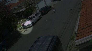 Mãe tira bebê de carro momentos antes do carro ser roubado - Cena de violência foi registrada no interior de São Paulo