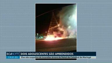 Adolescentes são apreendidos suspeitos de incendiar árvore de Natal em Maringá - Atração de 17 metros de altura foi destruída pelo fogo na madrugada desta quarta-feira (26); advogada dos garotos, de 14 e 16 anos, diz que eles são inocentes.