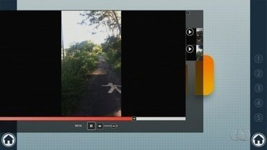 Telespectador reclama de matagal no Parque Macambira, em Goiânia - Local está abandonado.