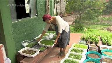 Mini-horta é opção para quem quer economizar - A Carla planta as hortaliças em uma área externa da casa. Tem beterraba, almeirão e rabanete, por exemplo.