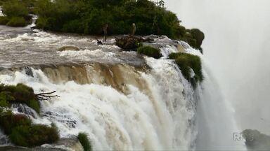 Parque Nacional do Iguaçu completa 80 anos - Funcionários puderam passear pelo parque e ainda teve bolo e parabéns.
