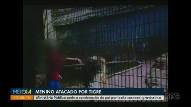 MP pede condenação de pai de menino que teve braço amputado por tigre - Acidente aconteceu em julho de 2014 no Zoológico Municipal de Cascavel.
