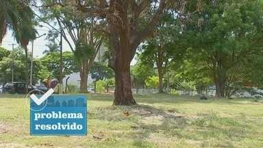 Prefeitura de Araçatuba faz mutirão de limpeza em terrenos contra criadouros de mosquitos - A prefeitura acionou as equipes de limpeza para evitar larvas do aedes aegypti.