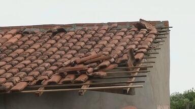Temporal causa prejuízos em Pereira Barreto e Andradina - Chuva de granizo e temporal geraram prejuízos em Pereira Barreto (SP) e Andradina (SP).