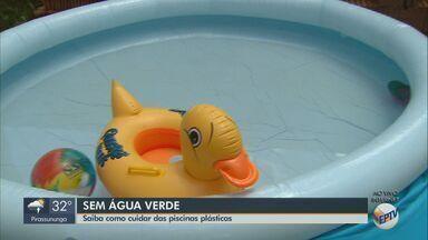 Especialista dá dicas de como cuidar das piscinas plásticas - É possível se refrescar sem gastar muito com a troca de água.