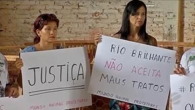 Moradores protestam contra maus tratos a animais - Em Rio Brilhante.