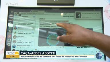 Robô virtual ajuda no combate aos focos do mosquito Aedes aegypti - Dengue, zika, chikungunya, síndrome de 'Guillain-Barré' e microcefalia. Todas as doenças têm relação direta ou indireta com o mosquito.