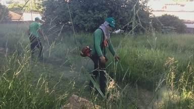 Prefeitura limpa terrenos sujos e multa os donos em Botucatu - A medida faz parte do decreto de emergência publicado para o combate ao mosquito da dengue.