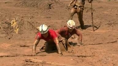 Boletim: número de mortos confirmados na tragédia de Brumadinho chega a 60 - O trabalho de resgate das vítimas do rompimento da barragem em Brumadinho continua. Até o momento, 292 pessoas são consideradas desaparecidas.