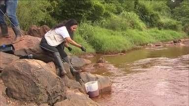 Pesquisadores analisam extensão dos estragos no Rio Paraopeba - Eles percorrem um trecho de 356 quilômetros, entre Brumadinho e a barragem de Três Marias, em Felixlândia coletando amostras de água.