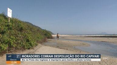 Rio em praia de Florianópolis está impróprio para banho e afasta turistas - Rio em praia de Florianópolis está impróprio para banho e afasta turistas