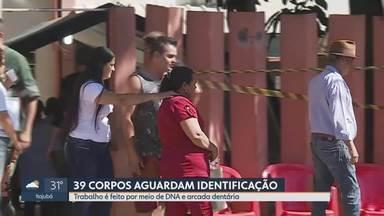 Polícia Civil ouve testemunhas da tragédia em Brumadinho - Trabalho de reconhecimento de vítimas é feito por meio de DNA e arcada dentária
