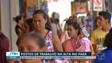 Pessoas usam a criatividade para superar desemprego e garantir renda - No Pará, o número de admissões aumentou, mas ainda existem muitas pessoas em busca de uma oportunidade de emprego.