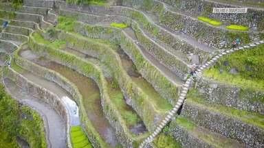 As Plantações De Arroz Em Batad