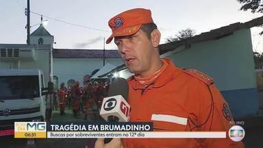 Brumadinho: buscas entram no 12º dia - Máquinas e cães farejadores são usados no resgate à vítimas de Brumadinho.