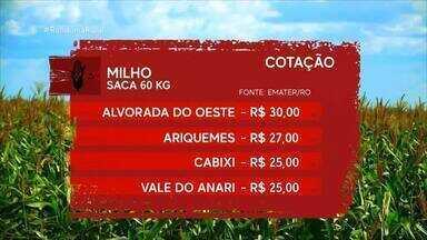 Veja os valores da cotação agrícola em RO - Preços são cotados pela Emater/RO.
