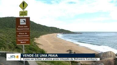 Caixa vai leiloar a última praia intocada de Balneário Camboriú - Caixa vai leiloar a última praia intocada de Balneário Camboriú