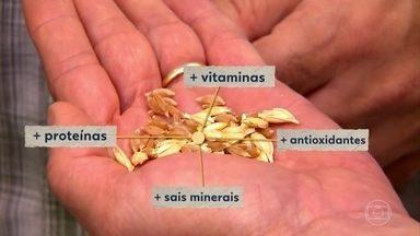 Sementes guardadas há séculos revelam como era o grão de trigo há dois mil anos - Em Tel Aviv um cofre guarda essa e outras relíquias ancestrais que contam o passado deste alimento milenar.